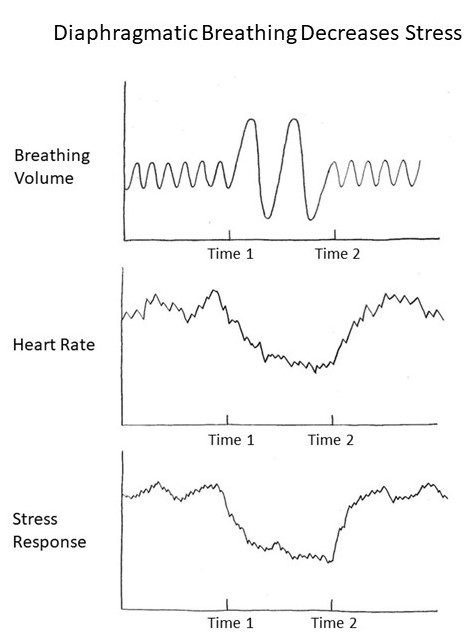 Breathing and Program Peace